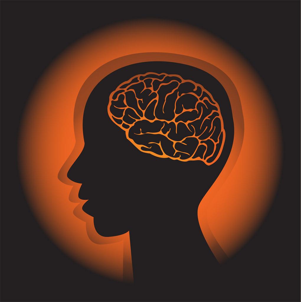 「脳出血 イラスト フリー」の画像検索結果